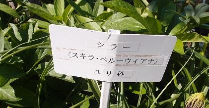 blog5-7.jpg